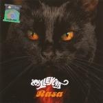 Kucing Alleycast