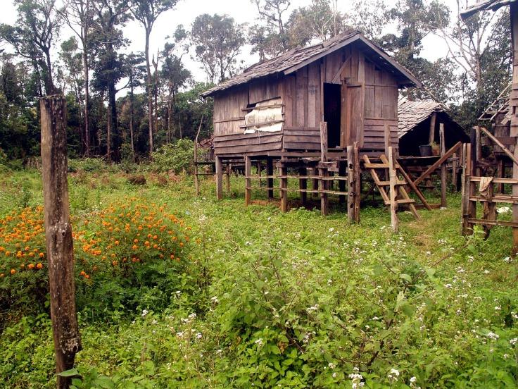 pile-dwelling-142317_1280